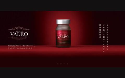 valeo_mini_01